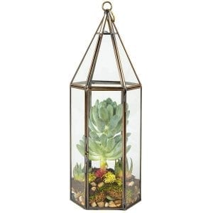 Hanging terrarium
