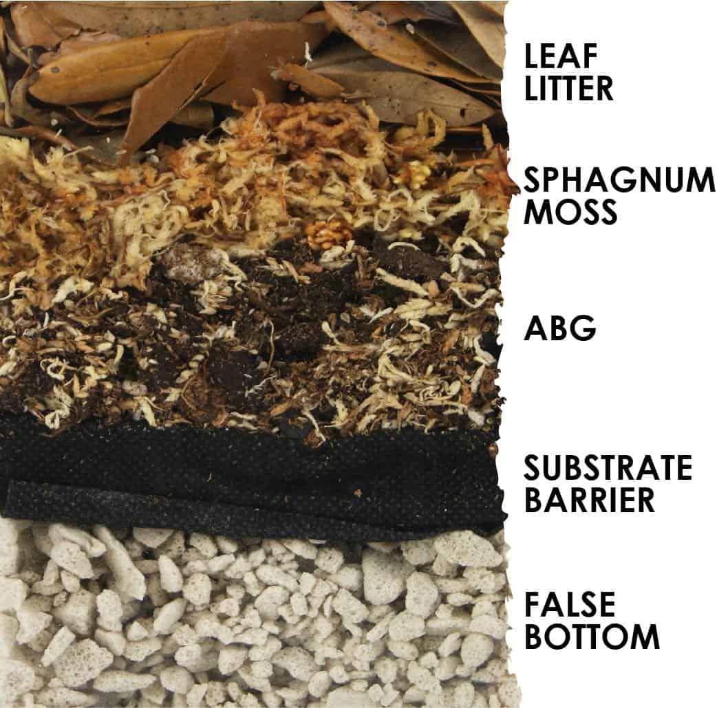 custom terrarium substrates