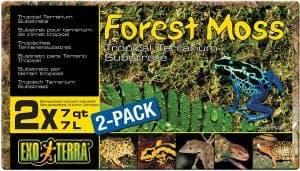 Exo Terra Forest Plume Moss