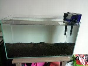 empty fish tank for brine shrimp culture