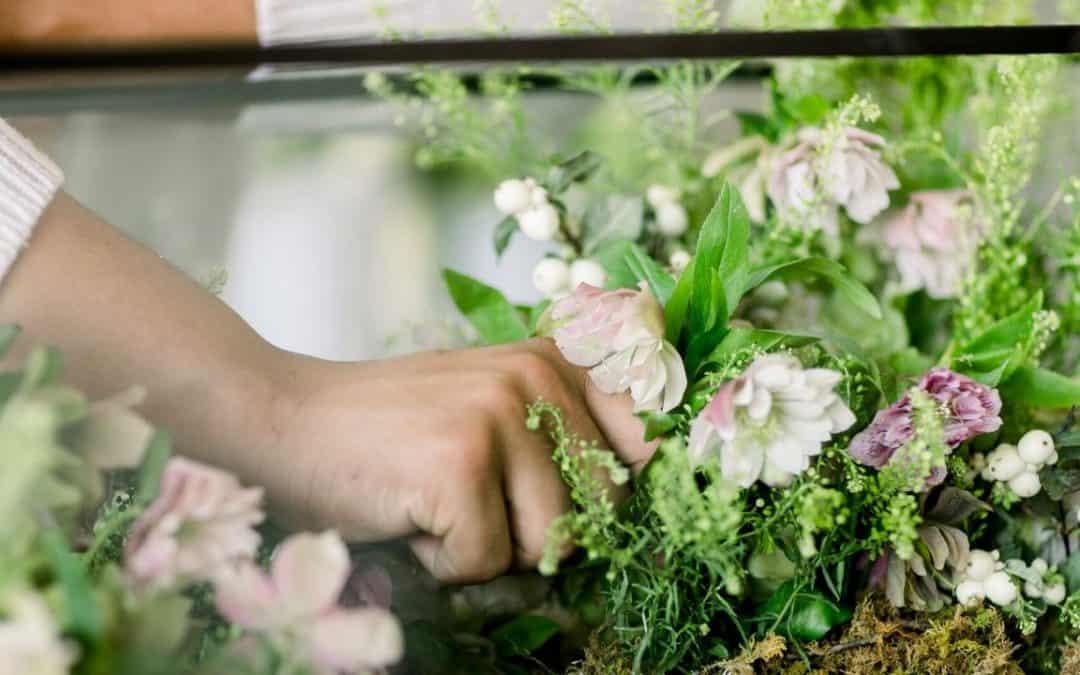 7 Gorgeous Flowering Terrarium Plants